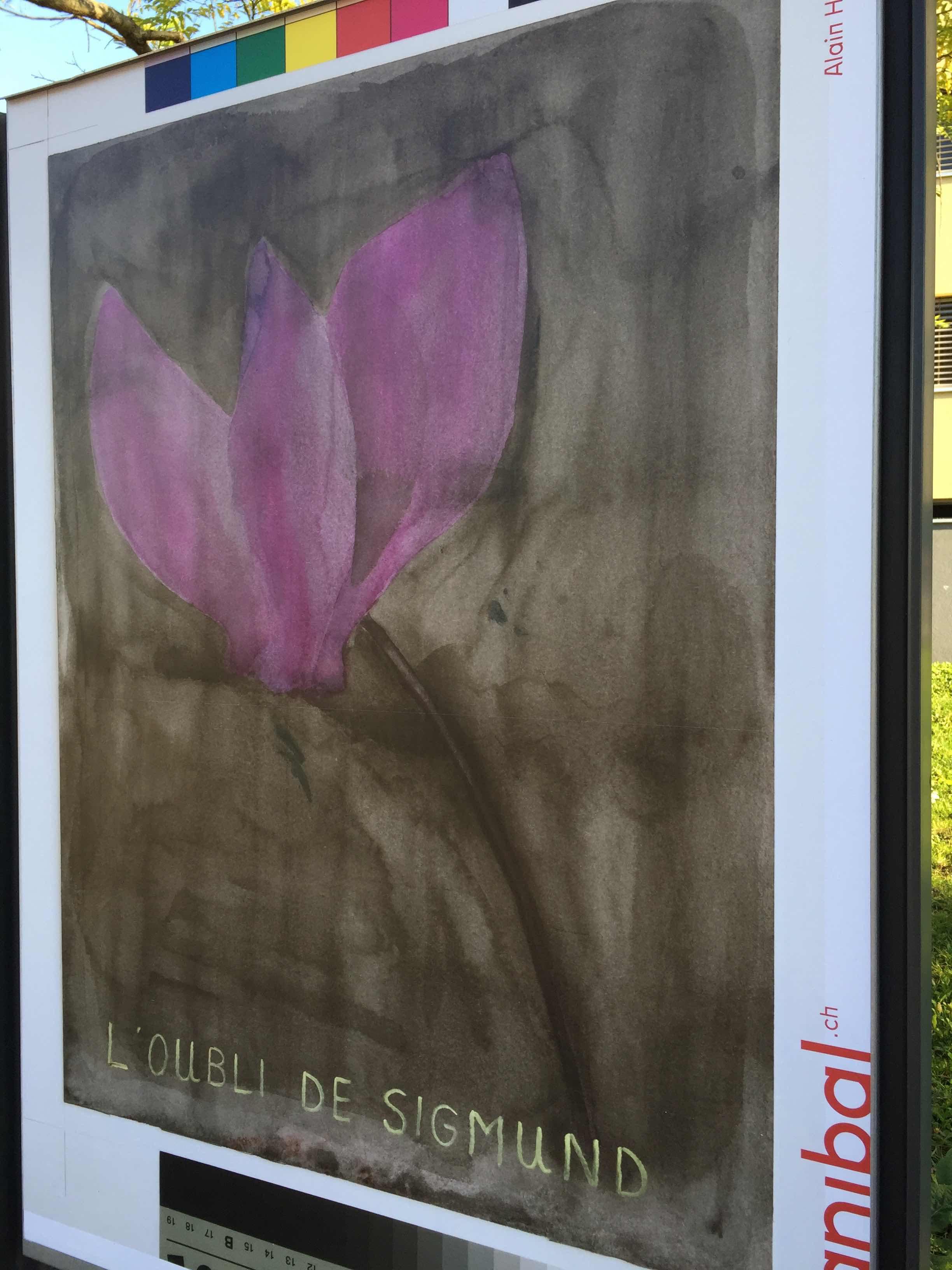 Alain Huck, avenue de provence 51, Lausanne-IMG_5941