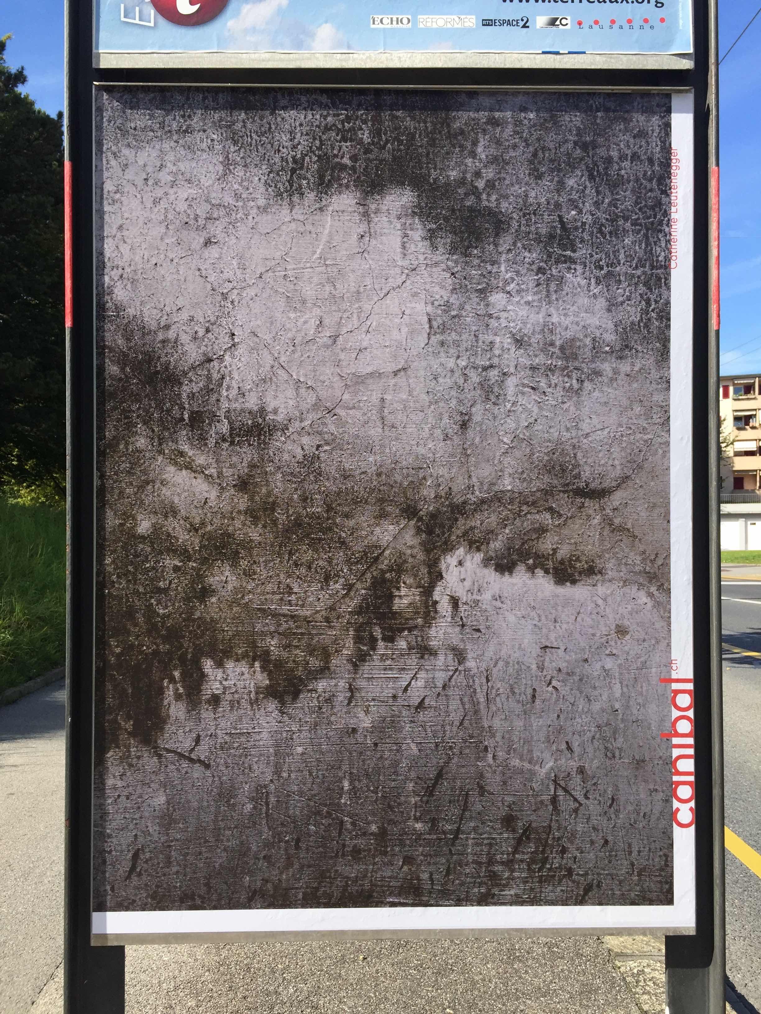 Catherine Leutenegger, route des plaines du loup 21, Lausanne-IMG_5703