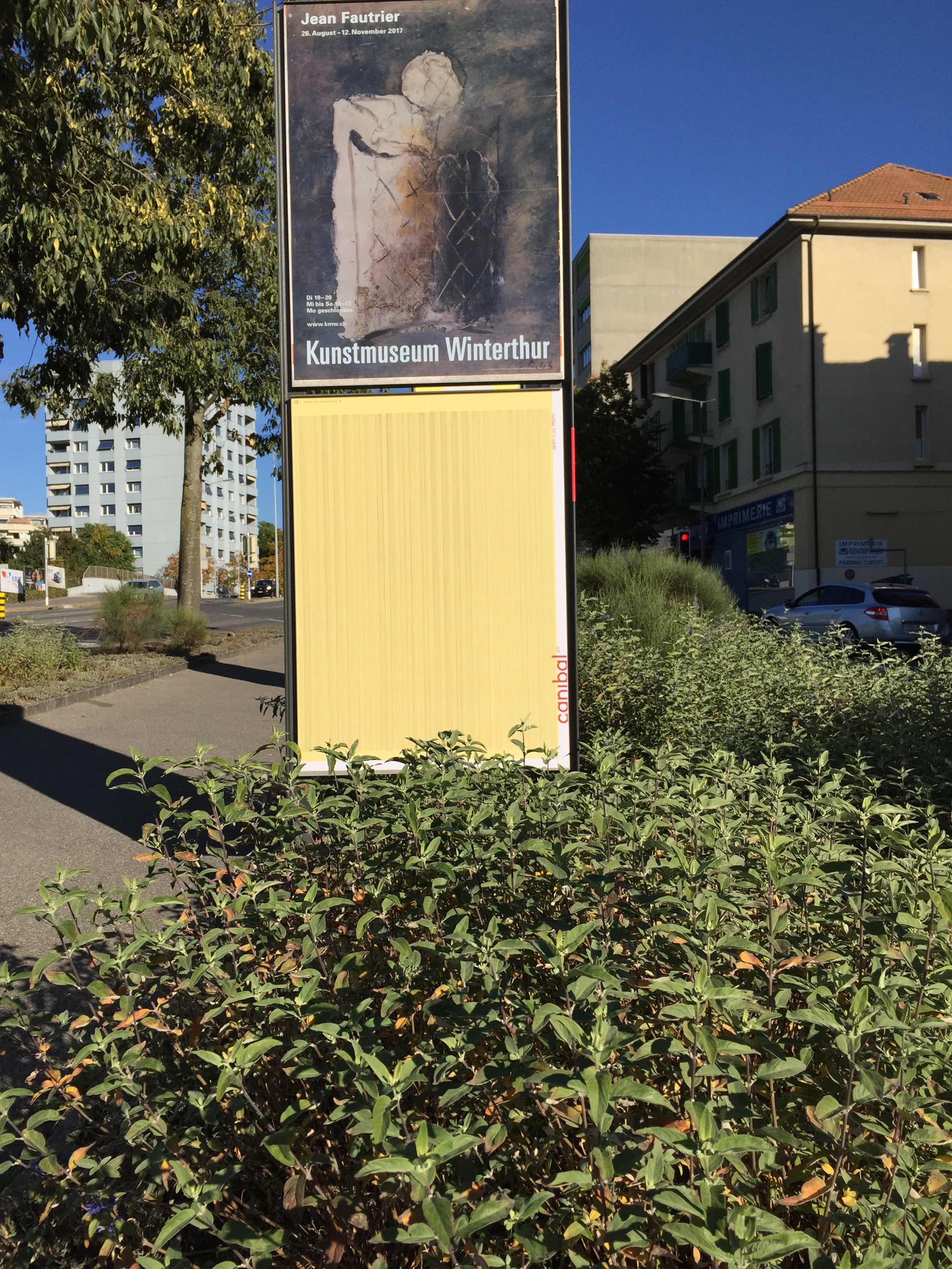 Jean-Luc Manz, avenue de tivoli 25, Lausanne-IMG_5887