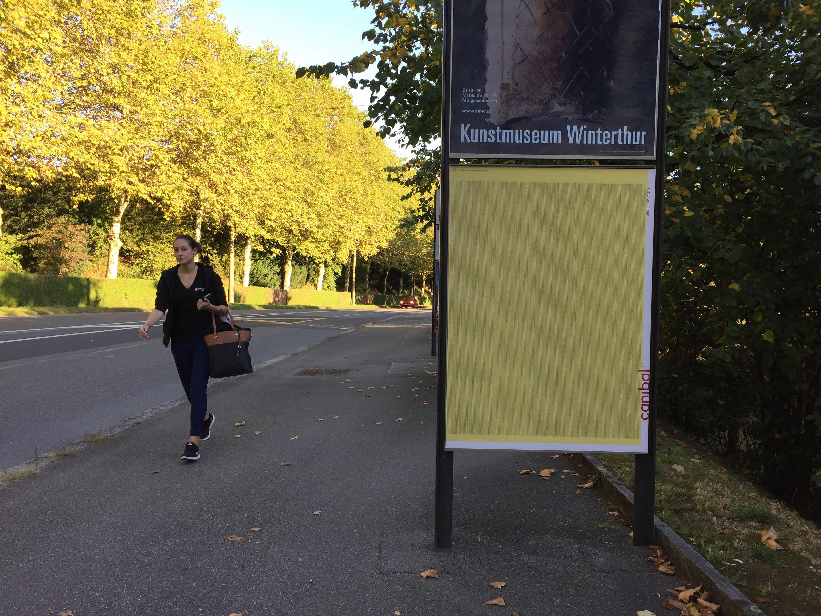 Jean-Luc Manz, route de chavannes 35, Lausanne-IMG_5971