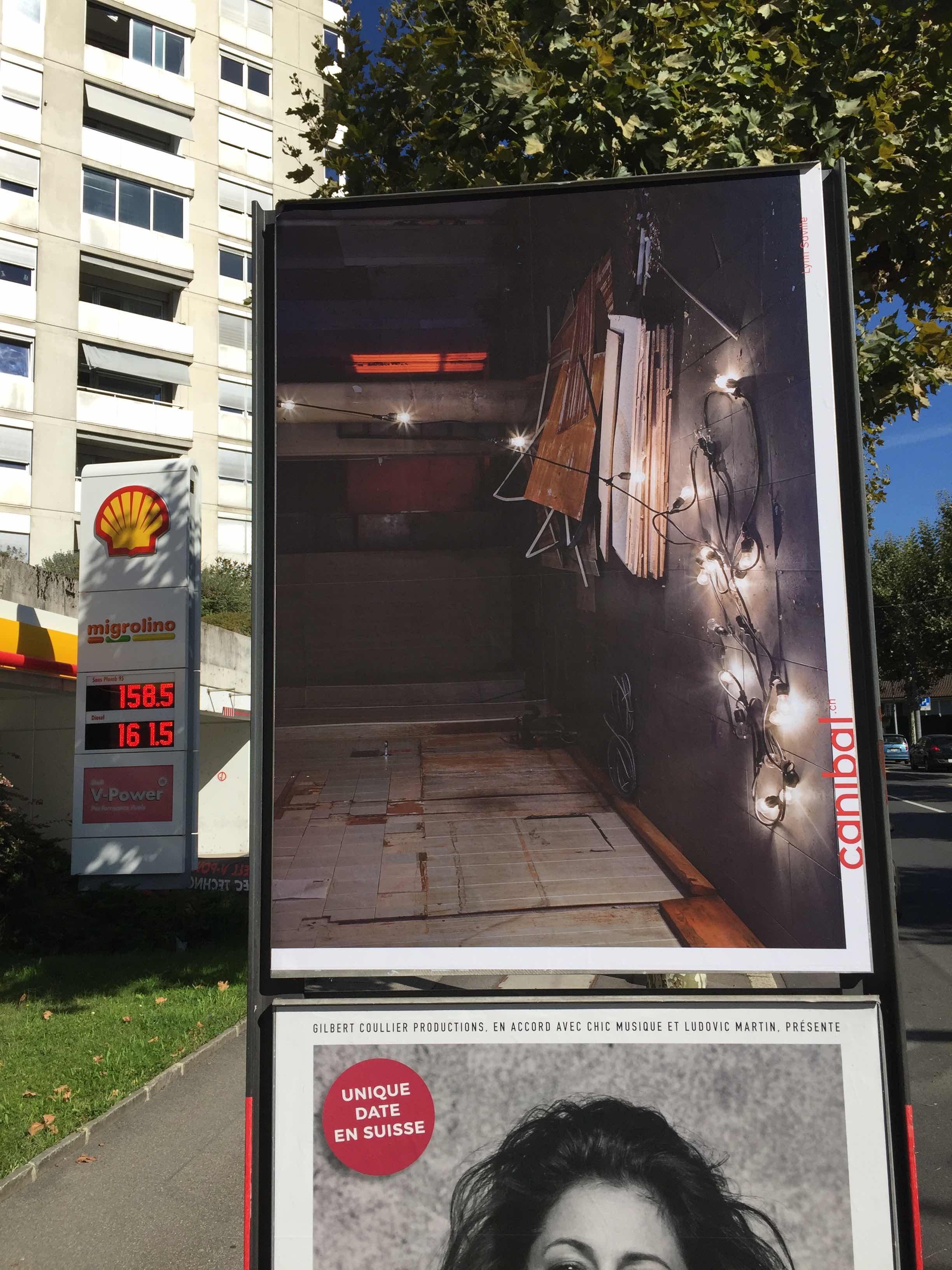 Lynn Saville, avenue des Figuiers 22, Lausanne-IMG_5472