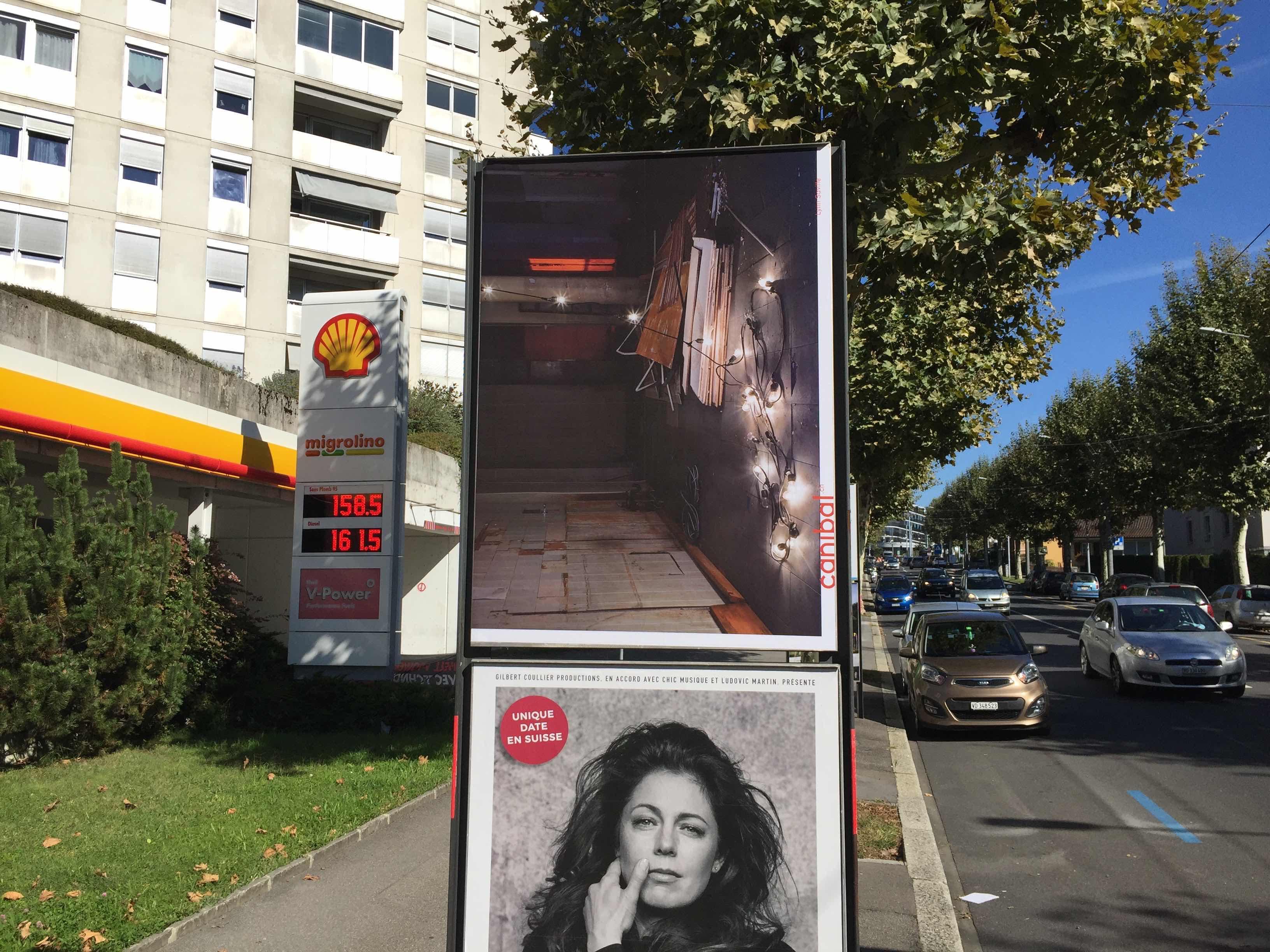 Lynn Saville, avenue des Figuiers 22, Lausanne-IMG_5475