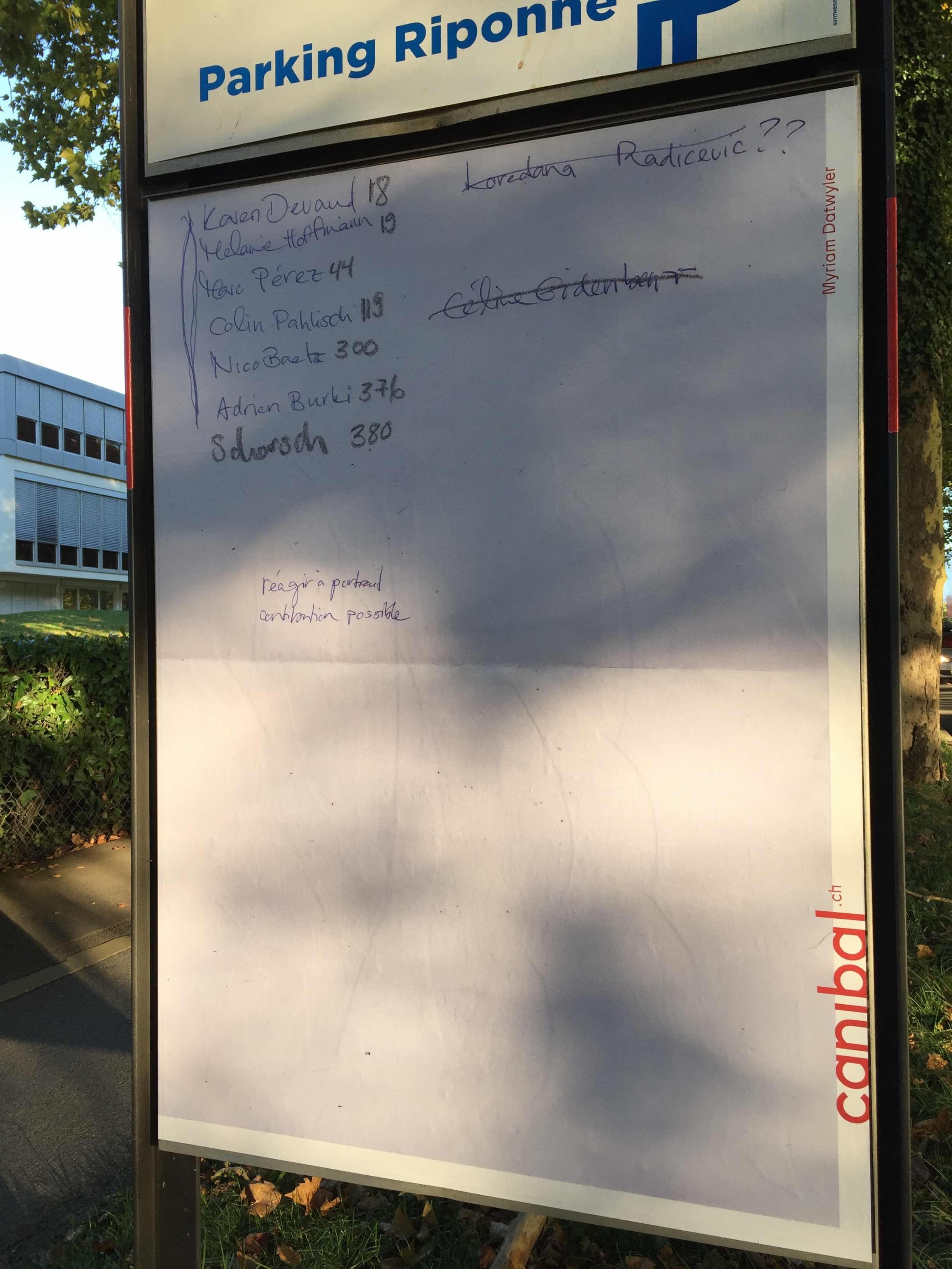 Myriam Dätwiler, avenue de Rhodanie 16, Lausanne-IMG_5979