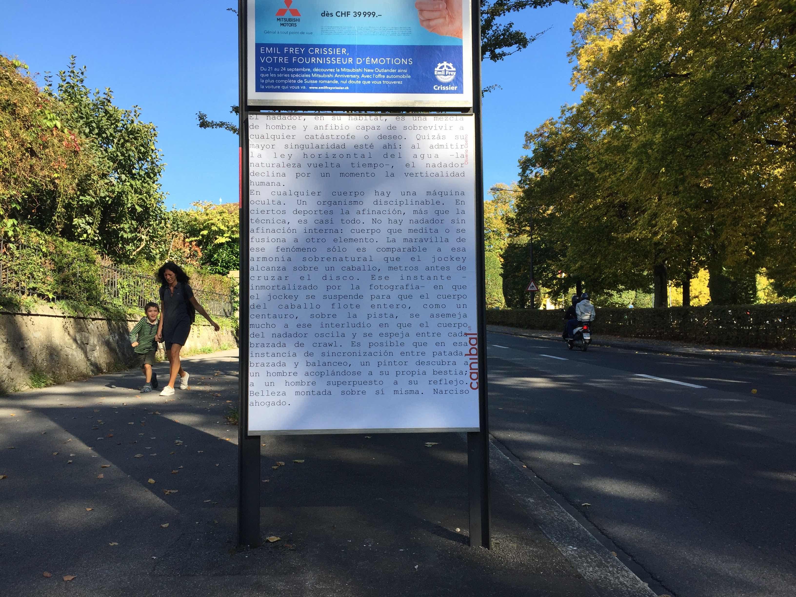 Oliverio Coelho, avenue de milan 10, Lausanne-IMG_5834